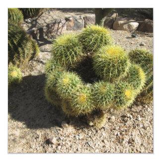 Golden Barrel Cactus Card