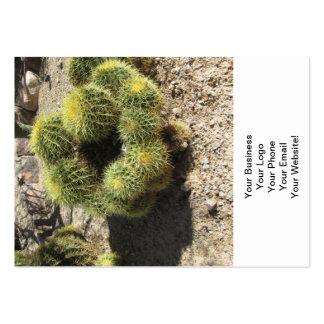 Golden Barrel Cactus Large Business Card