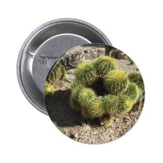 Golden Barrel Cactus Pinback Button