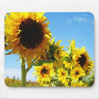 Golden Beauties Sunflowers Mousepad