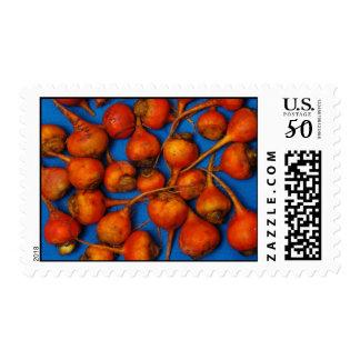 Golden Beets Stamps