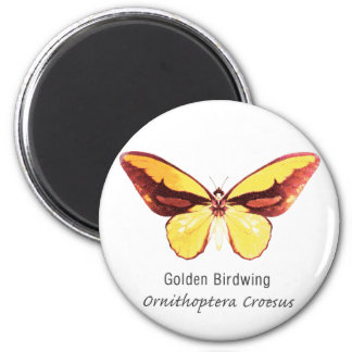 Golden Birdwing Butterfly with Name Magnet