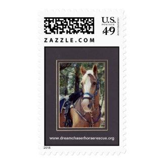Golden Boy Postage Stamps