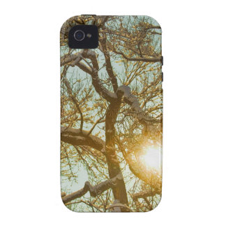 Golden Branches In The Snow iPhone 4 Cases