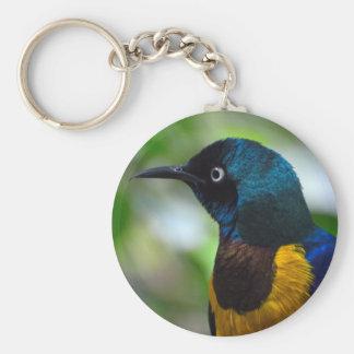 Golden-breasted Starling bird Keychain