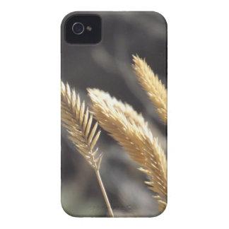 Golden Breeze iPhone 4 Case