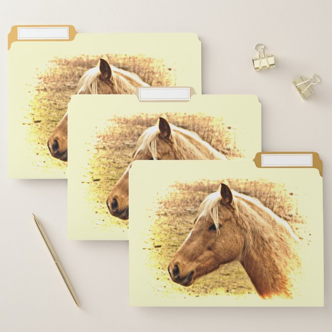 Golden Brown Horse in Sun File Folder Set