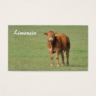 Golden brown limousin calf in a field business card
