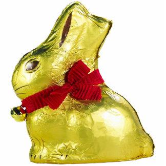 Golden Bunny Photo Sculpture