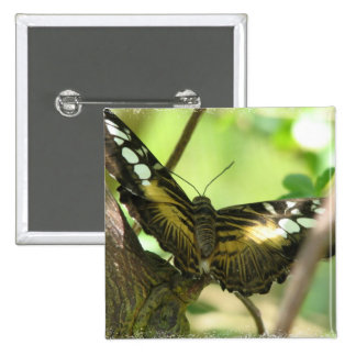 Golden Butterfly Square Pin