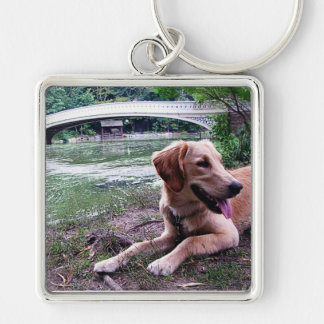 Golden by Bow Bridge in Central Park Keychain