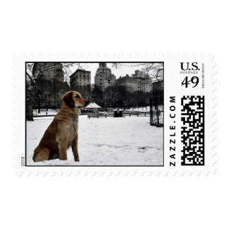 Golden by Conservatory Water-Central Park Stamp
