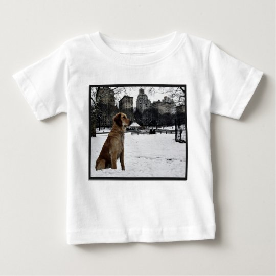 Golden by Conservatory Water-Central Park T-shirt