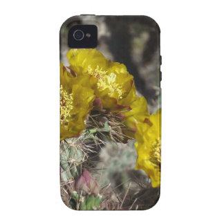 Golden Cactus Flowers iPhone 4 Case