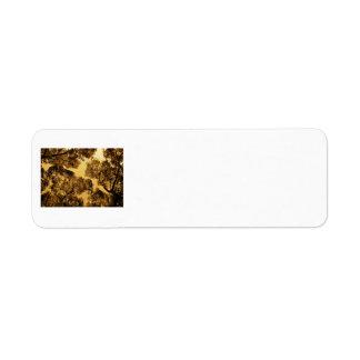 Golden Camphor Custom Return Address Labels