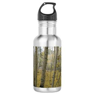 Golden Carpet Beneath a Grove of Quaking Aspen Stainless Steel Water Bottle