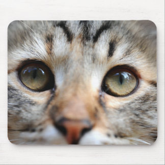 Golden Cat Eyes Mouse Pad