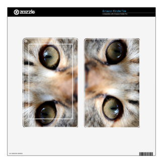 Golden Cat Eyes Kindle Fire Decals