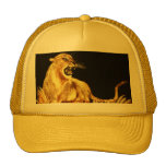 golden cat hat