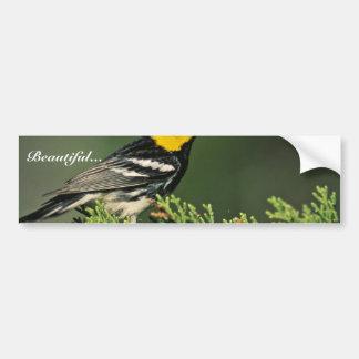 Golden-Cheeked Warbler Bumper Sticker