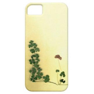 Golden Clover Dreams iPhone SE/5/5s Case