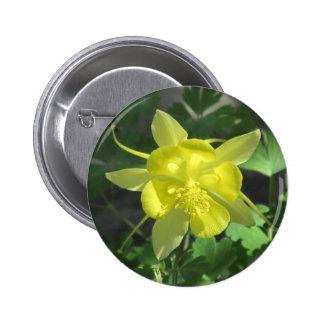 Golden Columbine Flower Pinback Buttons