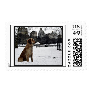 Golden-Conservatory Water-Central Park Stamp