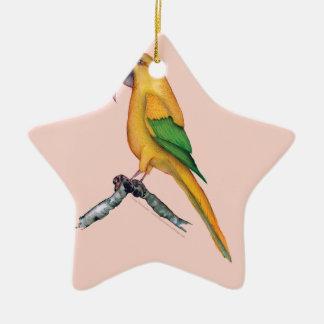 golden conure, tony fernandes.tif ceramic ornament
