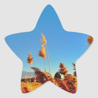 Golden country field, blue skys sticker