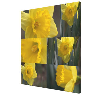 Golden Crown Narcissus (Daffodil) Photo Collage Gallery Wrap Canvas