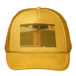 Golden Crowned Kinglet Bird Backyard BirdsBi Trucker Hat