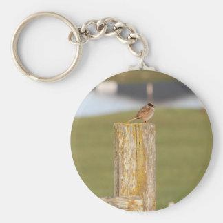 Golden Crowned Kinglet Bird Backyard BirdsBi Keychain