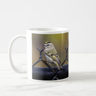 Golden-crowned Kinglet Coffee Mug