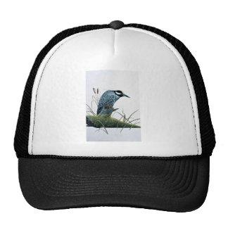 Golden-crowned night heron trucker hat
