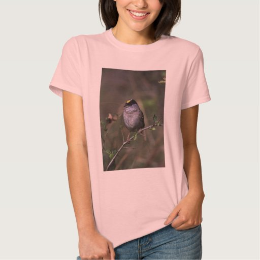 Golden-crowned Sparrow Tee Shirts