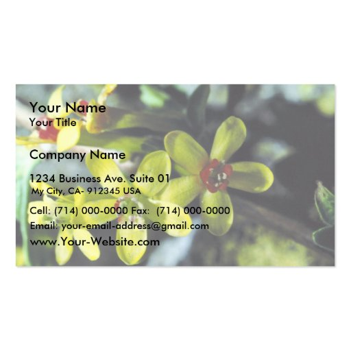 Golden Currant Double-Sided Standard Business Cards (Pack Of 100)