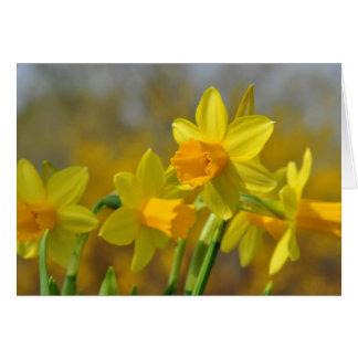 Golden Daffodils Card
