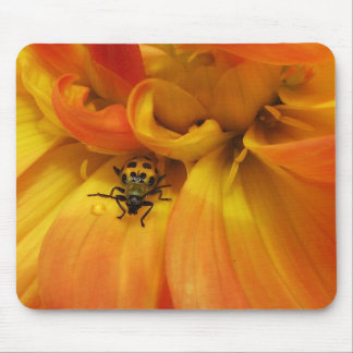 Golden Dahlia and Beetle Mouse Pad