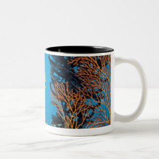 Golden Damselfish (Amblyglyphidodon aureus) Two-Tone Coffee Mug