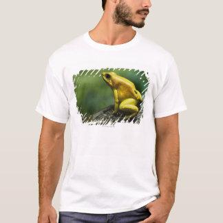 Golden Dart Frog T-Shirt