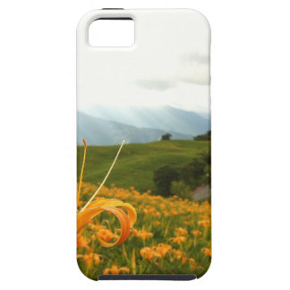 Golden Daylily flower Valley iPhone SE/5/5s Case