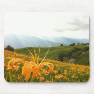 Golden Daylily flower Valley Mouse Pad