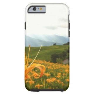 Golden Daylily flower Valley Tough iPhone 6 Case