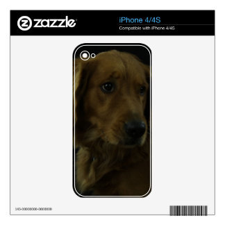Golden Decal For The iPhone 4S