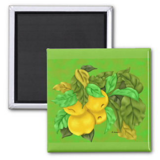 Golden Delicious Apple 2 Inch Square Magnet