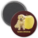 Golden Delicious Magnet