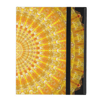 Golden Disc of Secrets Mandala iPad Folio Cases