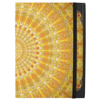 Golden Disc of Secrets Mandala iPad Pro Case