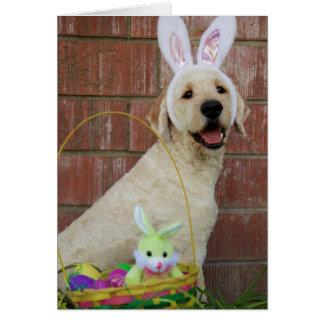 Golden Doodle Easter Card