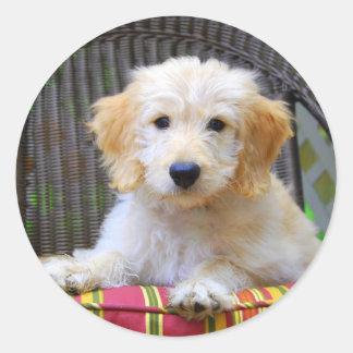 Golden Doodle Puppy Classic Round Sticker